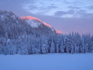 skidag-015